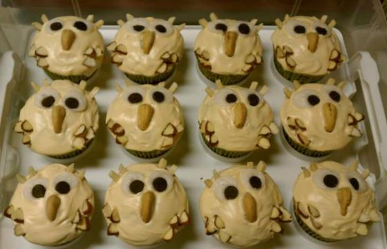 Kitsch Confections - Owl cupcakes for a woodsy-theme